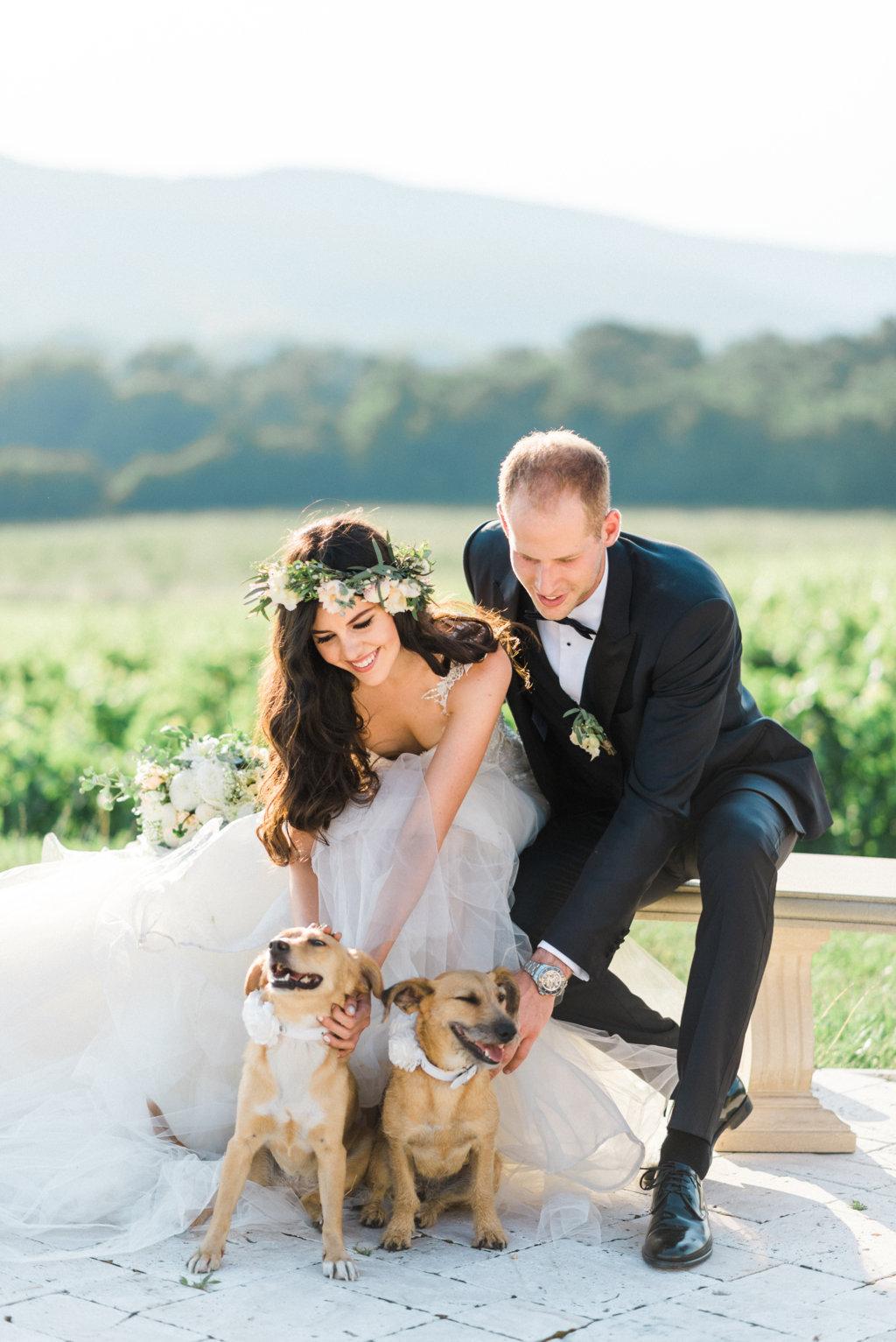 mascotas en tu boda