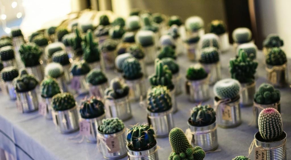 boda parador asturias cangas de onis 0923_AMG0323