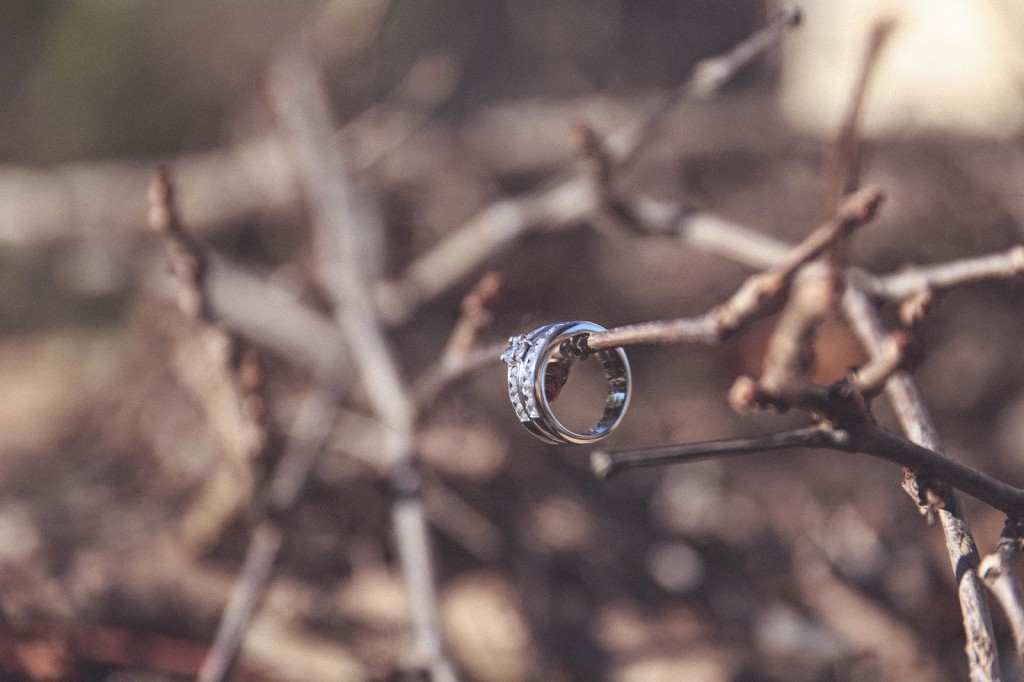 anillos roberto torretta