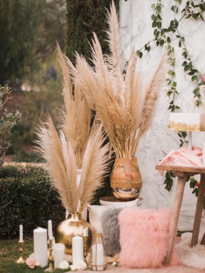 planta pampa en tu boda