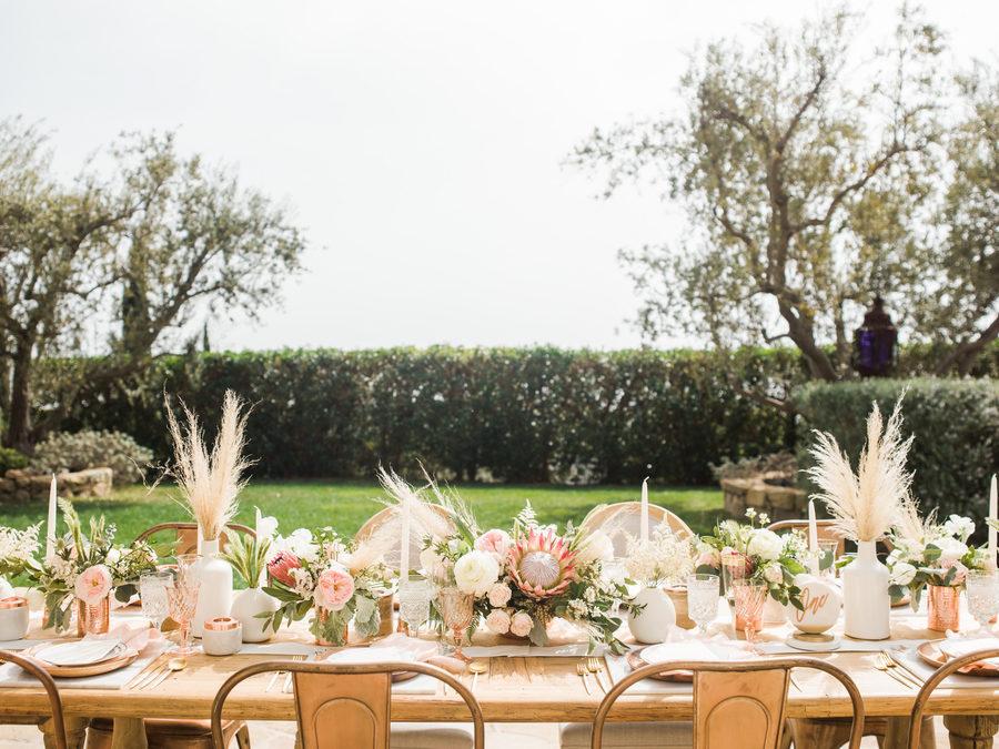 pampa bodas