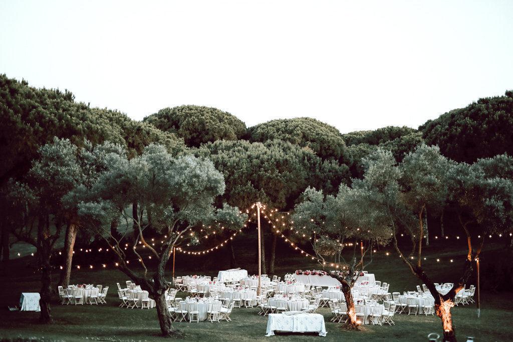 boda verbena