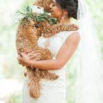 abrazo perro boda